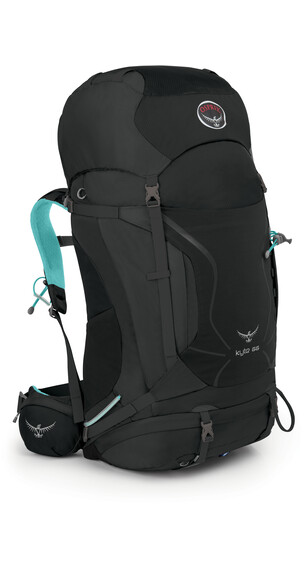 Osprey W's Kyte 66 Backpack Grey Orchid